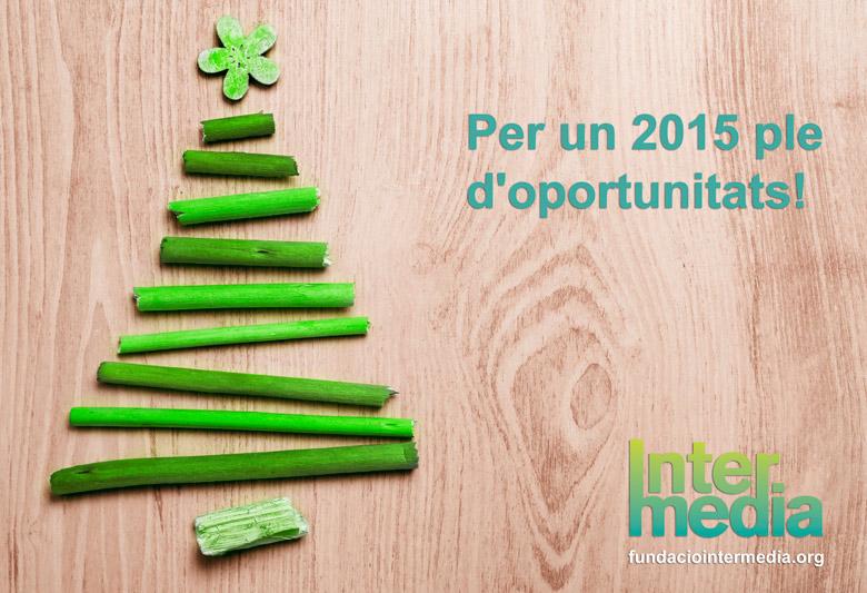 newsletter-navidad-2014